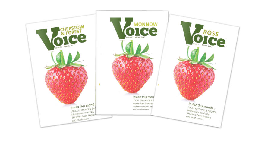 Covers for Monnow Voice, Chepstow and Forest Voice and Ross Voice magazines, July 2017