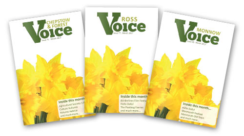 Front covers of the Voice Magazines, March 2017