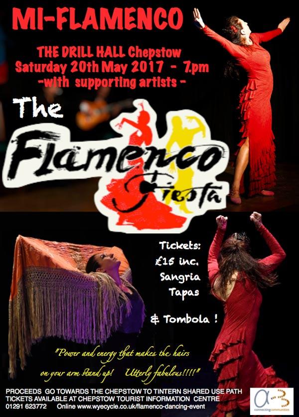 Poster for Flamenco Fiesta