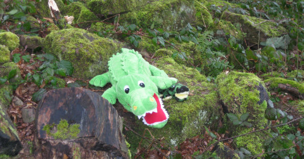 toy crocodile on Kymin Safari Trail