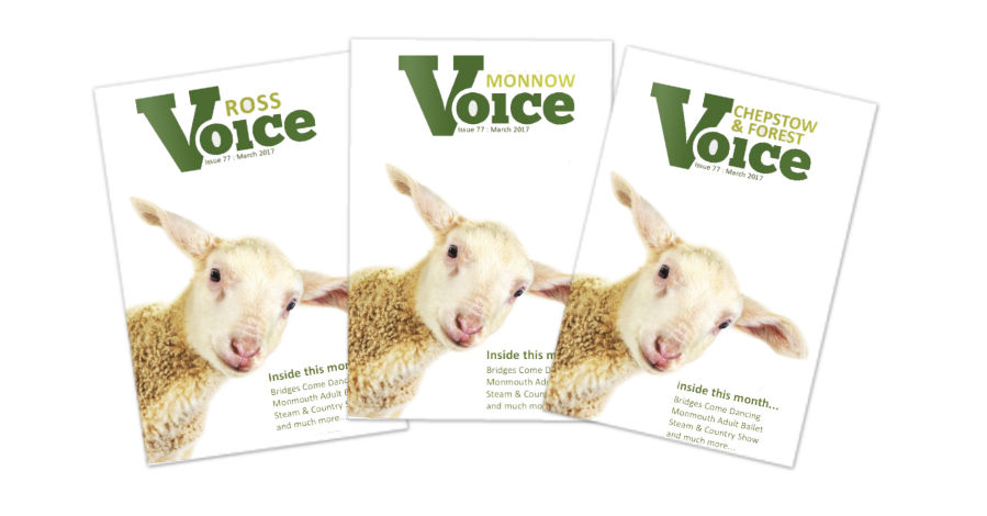 Covers for Monnow Voice, Chepstow and Forest Voice and Ross Voice magazines, Early Spring 2018