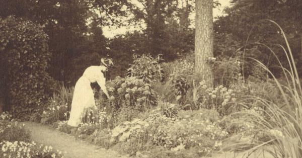 Lady in garden, 1910