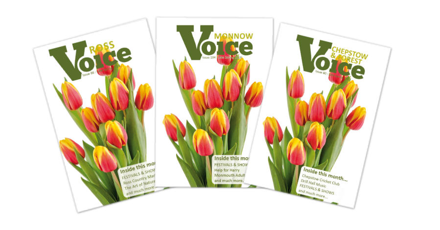 Tulips: Covers for Monnow Voice, Chepstow and Forest Voice and Ross Voice magazines, Spring 2018