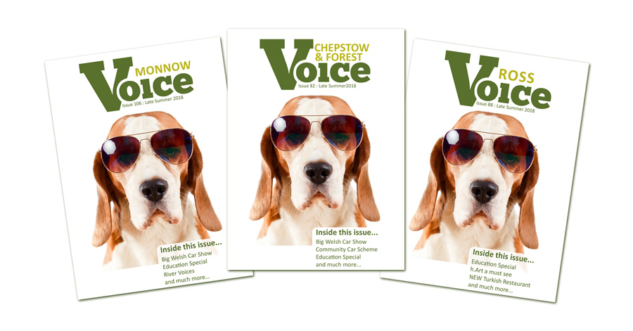 Dog with sunglasses: Covers for Monnow Voice, Chepstow and Forest Voice and Ross Voice magazines, Late Summer 2018