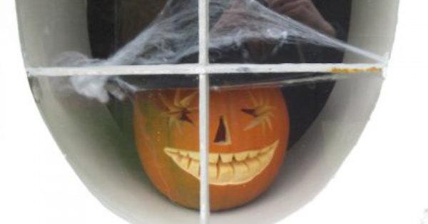 pumpkin with cobweb