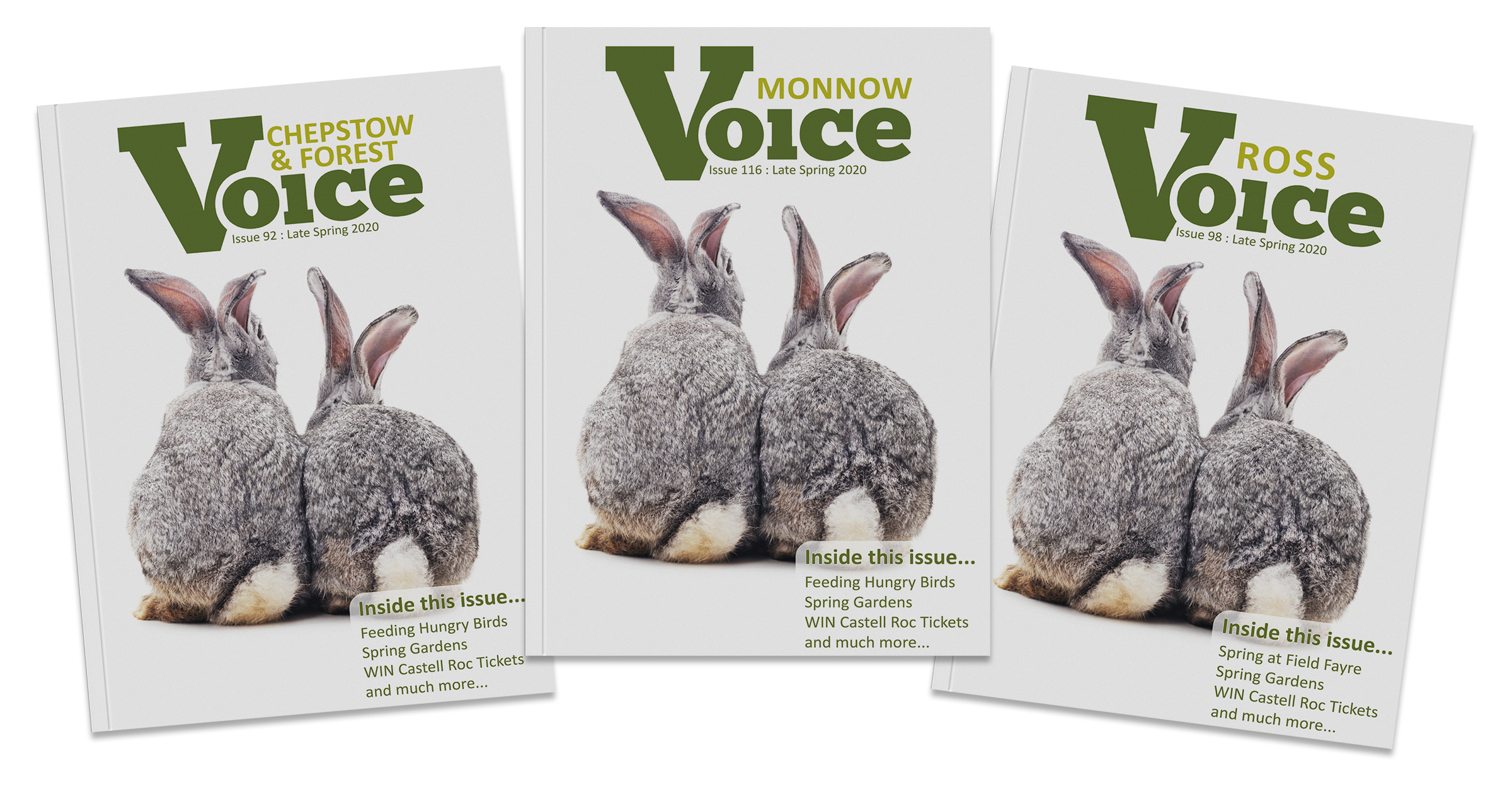 covers of the latest Voice Magazines
